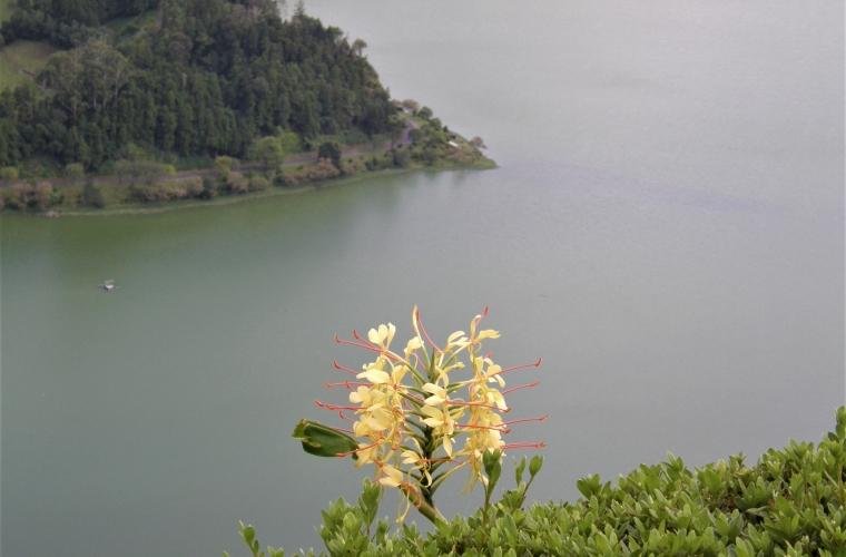 reis: Assoorid 9/2011 foto: Valli Loide