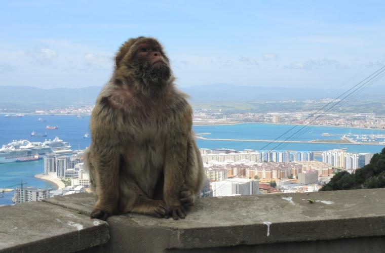 Üks ilus reis! Hispaania kuum süda - Andaluusia 4/2017 foto: Raivo Luik