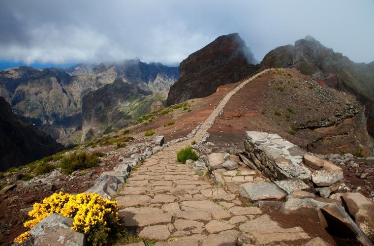 Portugal - Madeira kevadine lilleõites paradiis