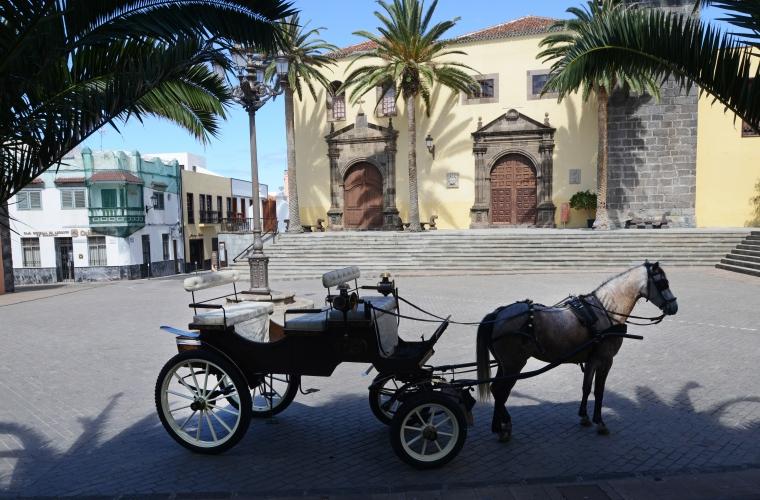 Hispaania - Tenerife kultuuri- ja puhkusereis