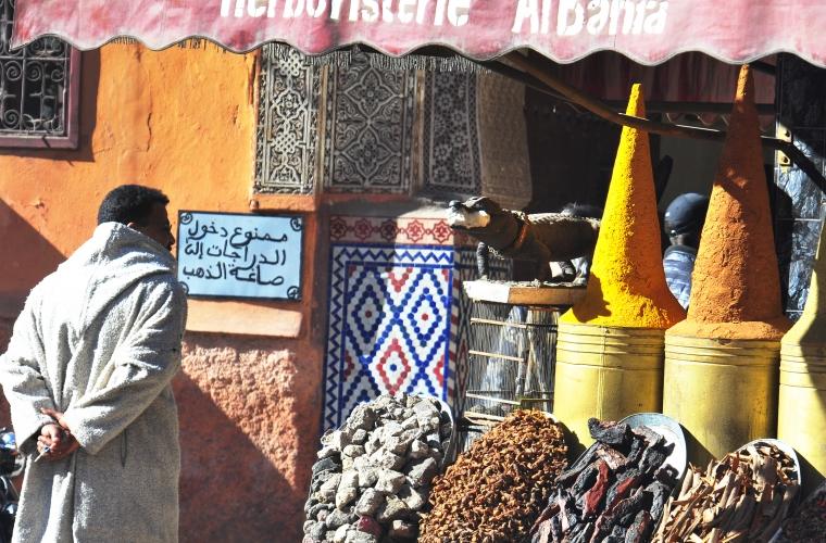 Maroko koostöös Maalehega