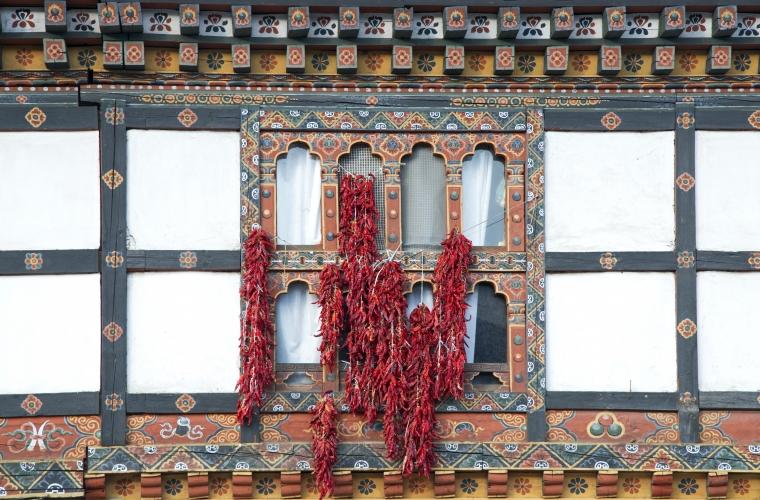 Nepal ja Bhutan - kultuuri- ja loodusreis maailma katusel