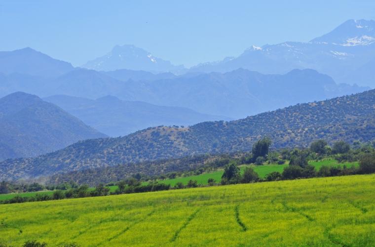 Argentina-Tšiili ringreis ja Lihavõttesaar